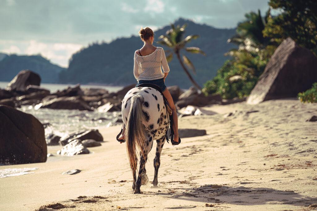Pferdefotografie auf den Seychellen